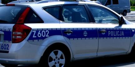 Policyjna infolinia specjalnie na 11 listopada