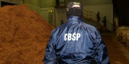 CBŚP: Niewolnicze warunki pracy w fabryce papierosów