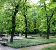 Powstaje mapa zielonych miejsc Warszawy
