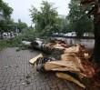 W plażowiczów wypoczywających nad Zalewem Zegrzyńskim uderzył piorun. Dwie osoby w szpitalu