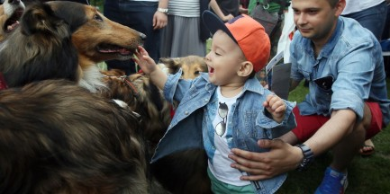 Międzynarodowy Dzień Dziecka. Program atrakcji dla najmłodszych