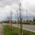 fot. ZOM Warszawa