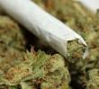 Policja: za 0,16 grama marihuany zaproponował 6 tysięcy złotych łapówki