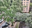 Drzewo zawaliło się na samochody!