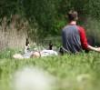 Dwuletni zakaz picia alkoholu nad Jeziorkiem Czerniakowskim?