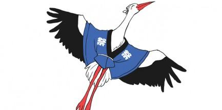 Matsuri - Piknik z Kulturą Japońską na Torwarze