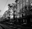 Paweł Elsztein: okupacja była koszmarem, wolę wspominać przedwojenną Pragę [ROZMOWA]