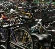 Dogoń Romea, złap Julię - na rowerze