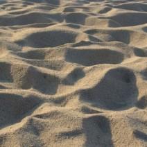 """Centralny Ośrodek Sportu szuka chętnych na 500 ton piasku. """"Cena do negocjacji"""""""