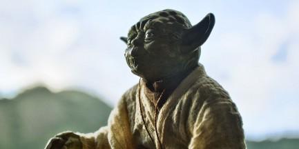 """Policja szuka mistrza Yody. """"Ma około metra wysokości"""""""