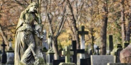 Wszystkich Świętych. Zmiany w organizacji ruchu przy cmentarzach [GALERIA]